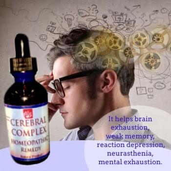 Cerebral Complex