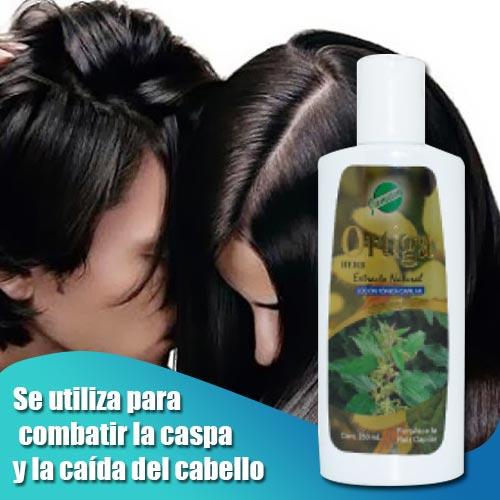 shampoo ortiga